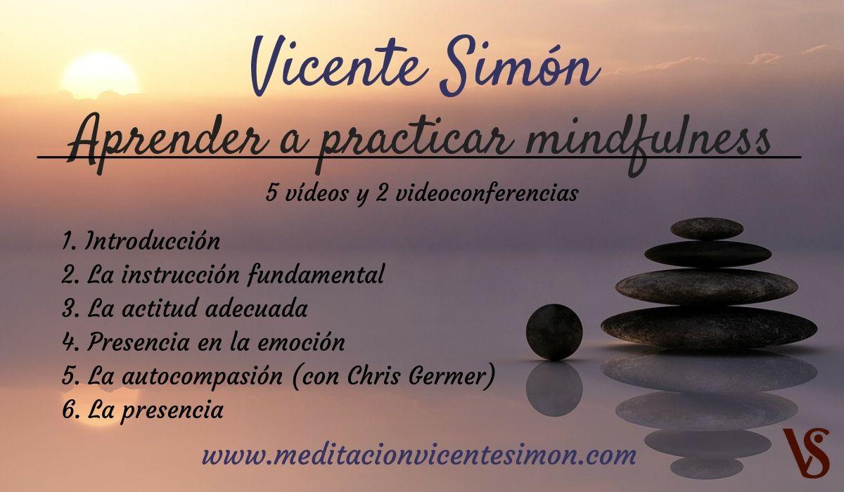Aprender mindfulness con Vicente Simón