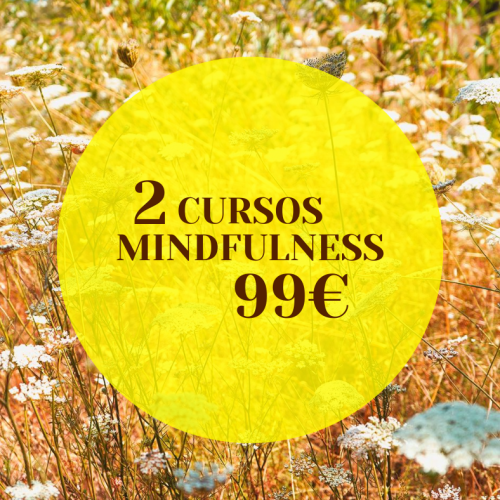 flores y mindfulness