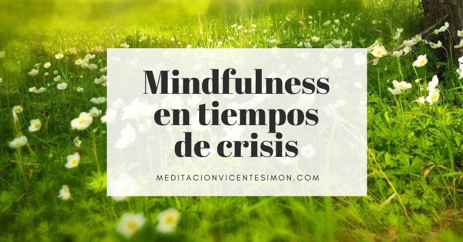 Mindfulness en tiempos de crisis. Curso de Vicente Simón