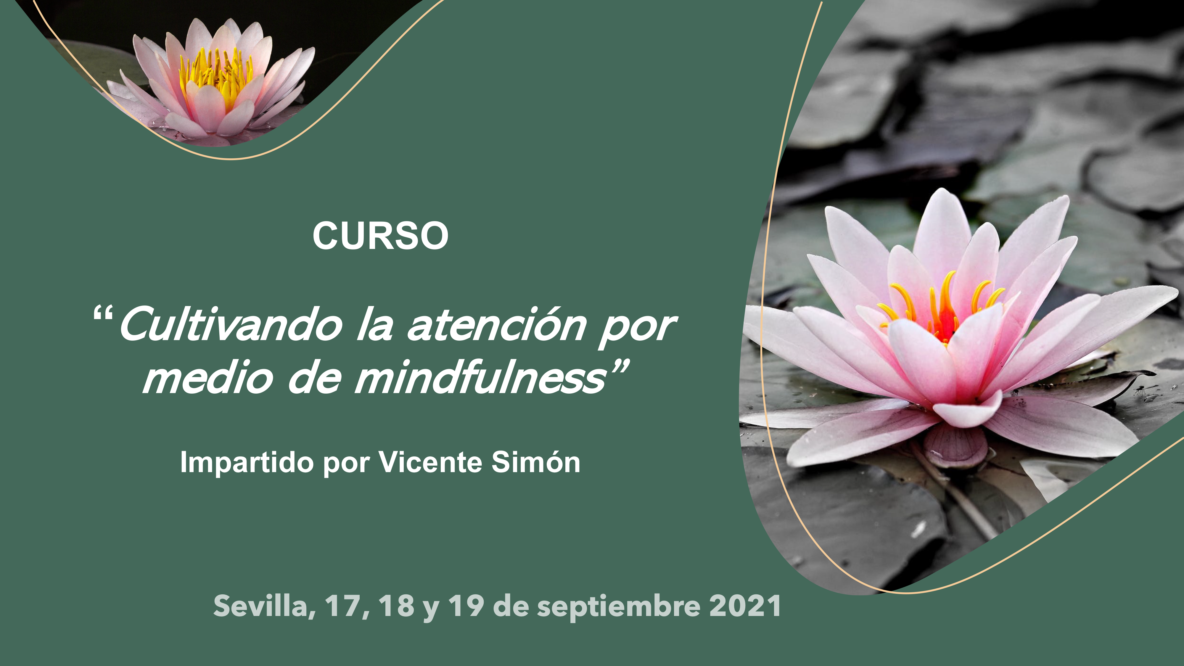 curso septiembre mindfulness
